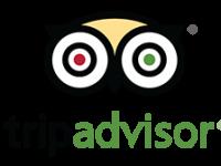 tripadvisor[1]